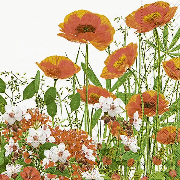 Lunchservietten Roter Mohn Wiese (Red meadow)