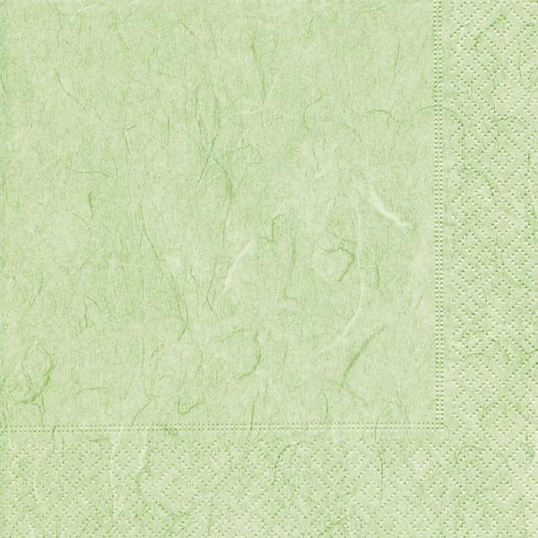 20 Serviette Mint Grün Struktur Elegant Einfarbig Hochzeit Zeitlos Kommunion Taufe Geburtstag Liebe Modern Colours33x33 Cm 3 Lagig 14 Gefaltet Auf