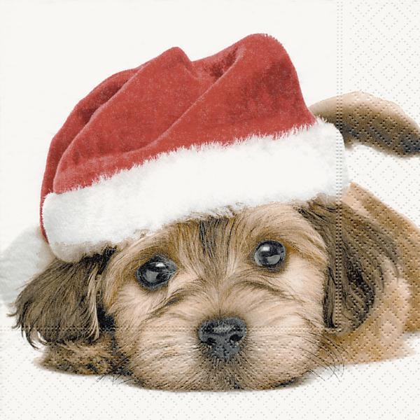 20 servietten niedlicher weihnachtshund hund tiere winter. Black Bedroom Furniture Sets. Home Design Ideas